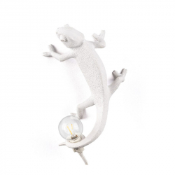Applique CHAMELEON GOING UP SELETTI